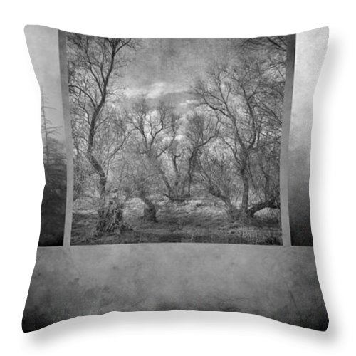 Landscapes Throw Pillow featuring the photograph Collage Misty Trees by Guido Montanes Castillo