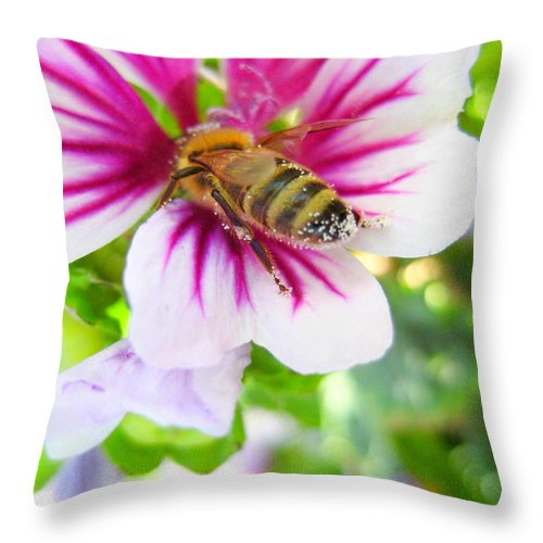 Bee Throw Pillow featuring the photograph Collecting by Kathy Bassett