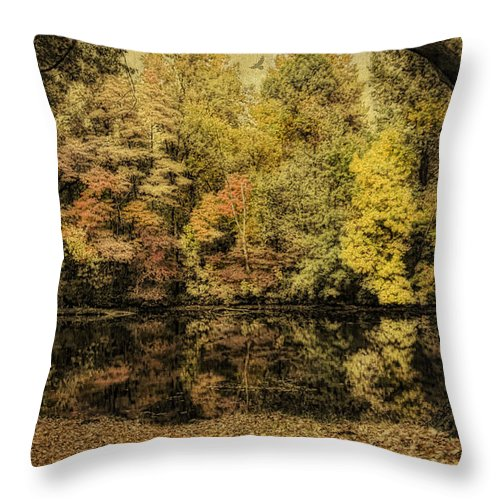 Fall Throw Pillow featuring the photograph Color Splash by Mary Timman
