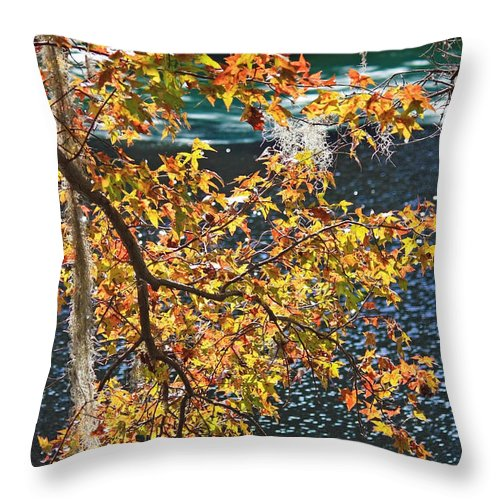 Fall Leaves Throw Pillow featuring the photograph Colorful Fall Leaves Over Blue Water by Carol Groenen