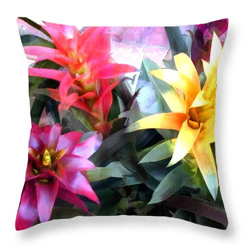 Flower Flowers Garden Bromeliad Tropical Succulents Flora Floral Nature Natural Bloom Blooms Blossoms Blossom Bouquet Arrangement Bromeliads Colorful Plant Plants Botanical Botanic Blooming Gardens Gardening Tropical Annual Annuals Perennial Perennials Bulb Bulbs Throw Pillow featuring the painting Colorful Mixed Bromeliads by Elaine Plesser