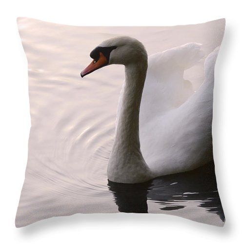 Swan Throw Pillow featuring the photograph Completely Elegant by Bob Christopher