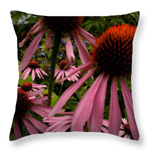 Echinacea Throw Pillow featuring the painting Coneflowers by Renate Nadi Wesley