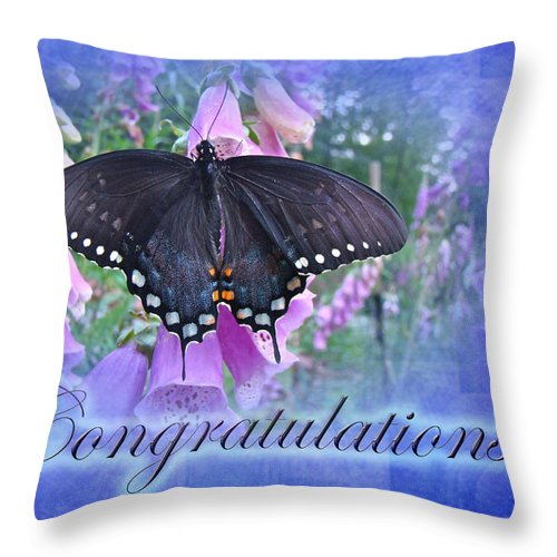 Butterfly Throw Pillow featuring the photograph Congratulations Greeting Card - Spicebush Swallowtail Butterfly by Mother Nature