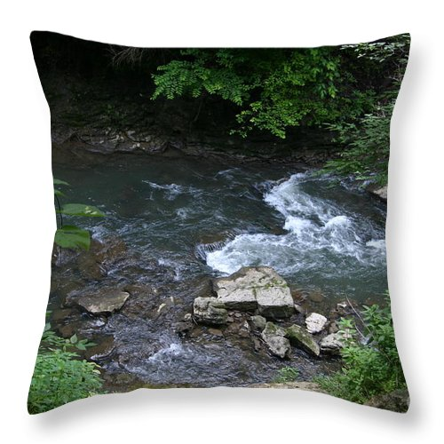 Clifton Gorge Throw Pillow featuring the photograph Cool In The Summer by Robert E Alter Reflections of Infinity