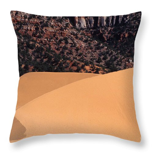 Bronstein Throw Pillow featuring the photograph Coral Pink Sand Dunes by Sandra Bronstein