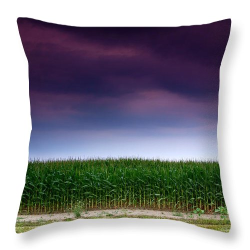 Corn Throw Pillow featuring the photograph Corn Row by Cale Best