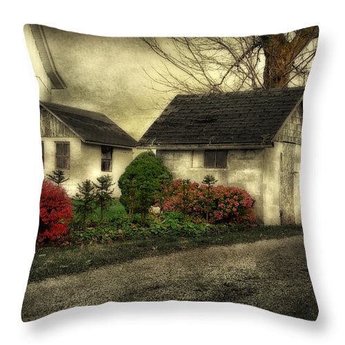 Barns Throw Pillow featuring the photograph Country Charm by Mary Timman