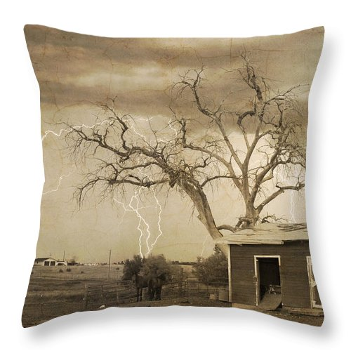 Country Throw Pillow featuring the photograph Country Horses Lightning Storm Ne Boulder County Co 76septx by James BO Insogna