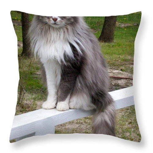 Cat Throw Pillow featuring the painting Country Life Is Good by Tom Nettles