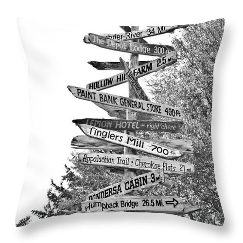 Paint Throw Pillow featuring the photograph Country Places by Betsy Knapp