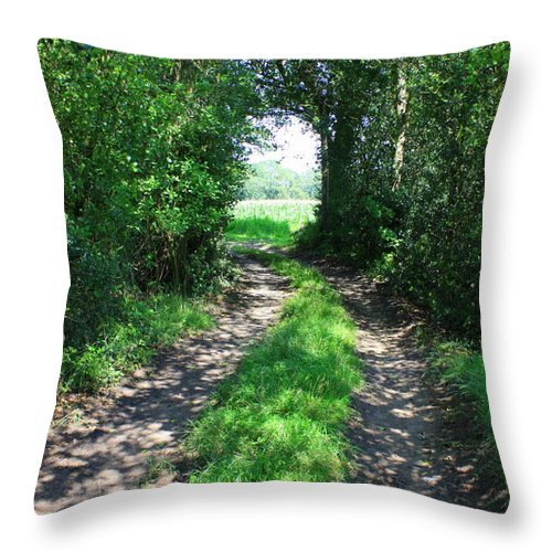 Country Road Throw Pillow featuring the photograph Country Road by Carol Groenen