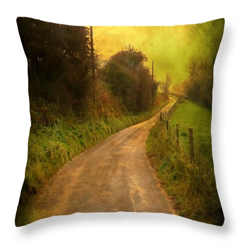 Abstract Throw Pillow featuring the photograph Countryside Road by Svetlana Sewell
