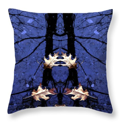 Throw Pillow featuring the photograph Creation 118 by Mike Nellums