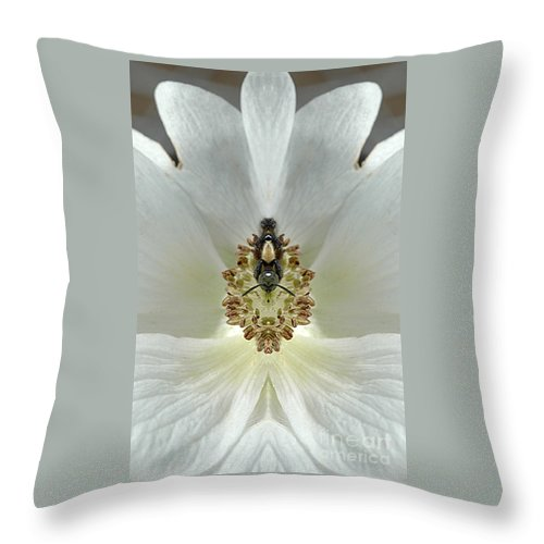 Throw Pillow featuring the photograph Creation 34 by Mike Nellums