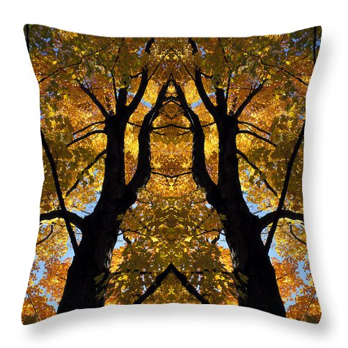 Throw Pillow featuring the photograph Creation 39 by Mike Nellums