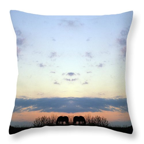 Throw Pillow featuring the photograph Creation 93 by Mike Nellums