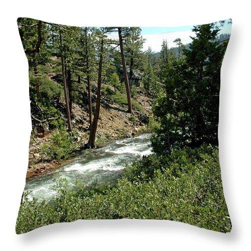 Usa Throw Pillow featuring the photograph Creek Glen Alpine Creek by LeeAnn McLaneGoetz McLaneGoetzStudioLLCcom