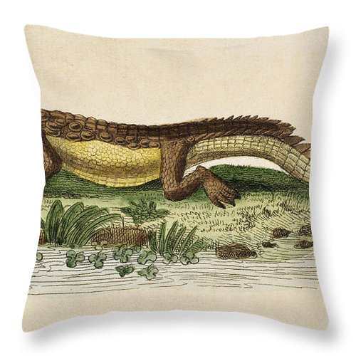 1799 Throw Pillow featuring the photograph Crocodile by Granger