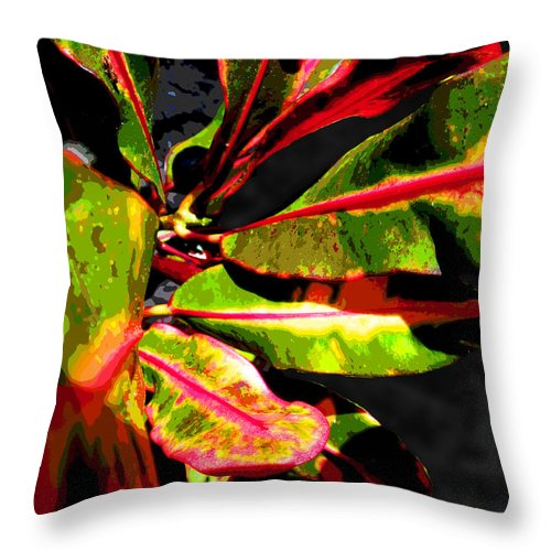 Croton Throw Pillow featuring the photograph Croton Abstract I by Ginny Schmidt