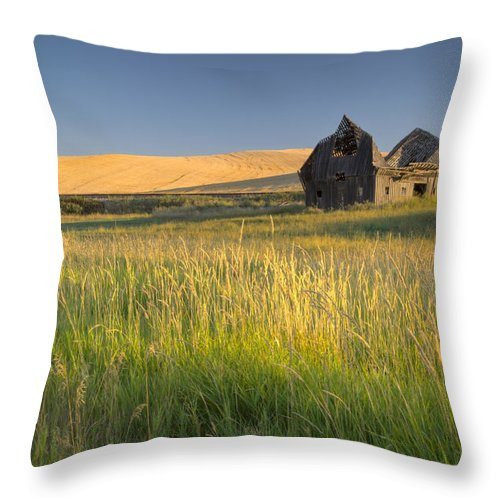 Washington Throw Pillow featuring the photograph Crushed By Time by Idaho Scenic Images Linda Lantzy