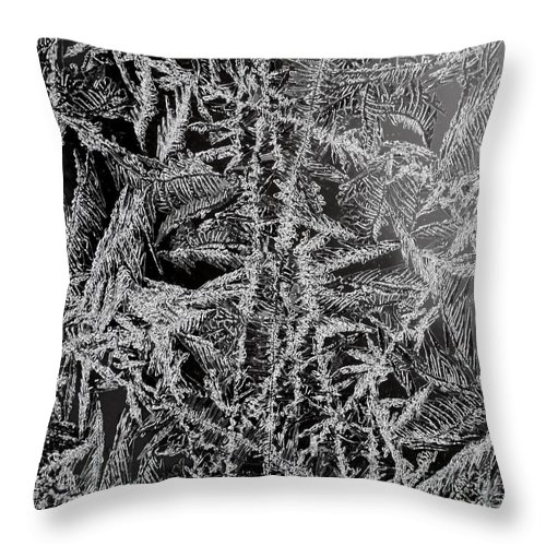 Ice Throw Pillow featuring the photograph Crystal 13 by Sabine Jacobs