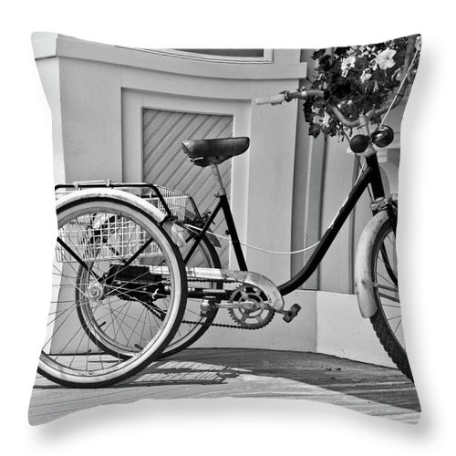 Paint Throw Pillow featuring the photograph Cycle by Betsy Knapp