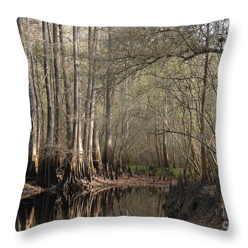 Cypress Throw Pillow featuring the photograph Cypress And Water by Nancy Greenland
