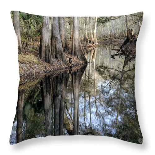 Cypress Throw Pillow featuring the photograph Cypress Reflections by Nancy Greenland