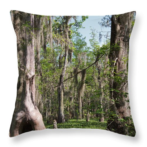 Swamp Throw Pillow featuring the photograph Cypress Trees And Water Hyacinth In Lake Martin by Louise Heusinkveld