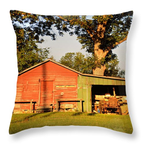 Interior Design Throw Pillow featuring the photograph Dad's Old H by Paulette B Wright