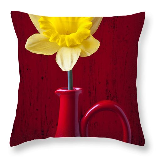 Yellow Throw Pillow featuring the photograph Daffodil In Red Pitcher by Garry Gay