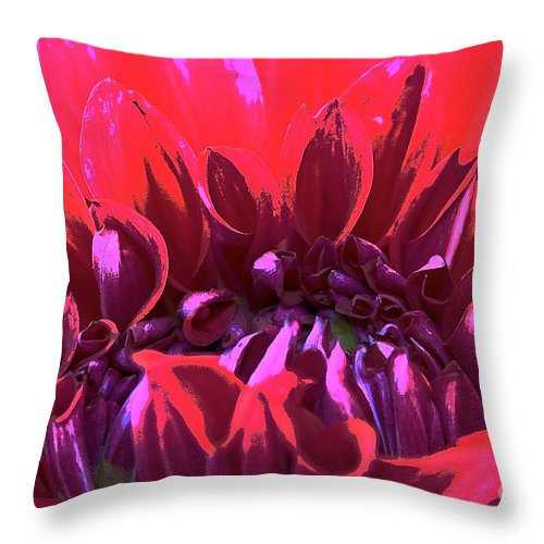 Landscape Throw Pillow featuring the photograph Dahlia Over Exposed by Susan Herber