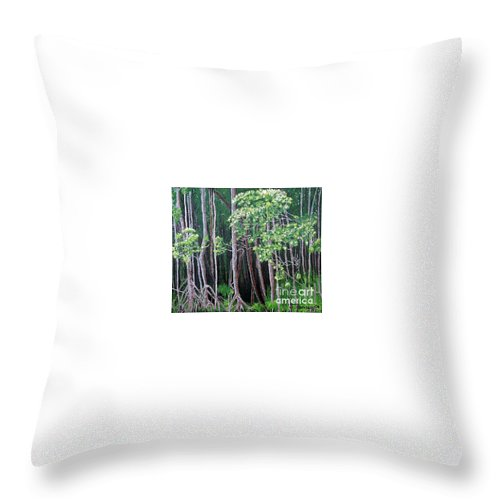 Paintings Throw Pillow featuring the painting Daintree Forest At Twilight by Tatjana Popovska