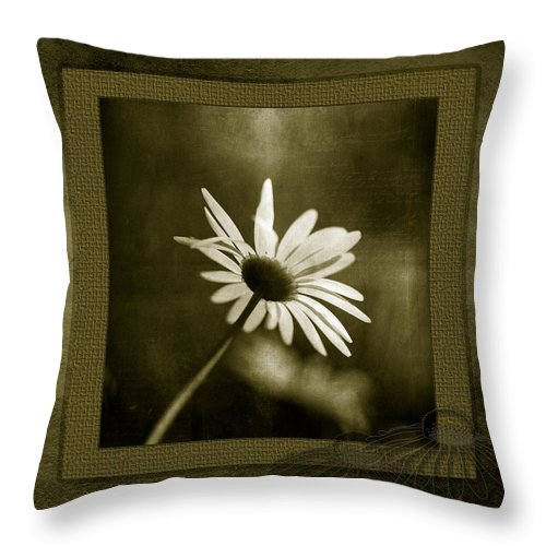 Memories Throw Pillow featuring the photograph Daisy by Bonnie Bruno