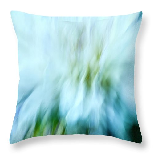 Blurred Motion Throw Pillow featuring the photograph Dancing Angels - 2 by Paul W Faust - Impressions of Light