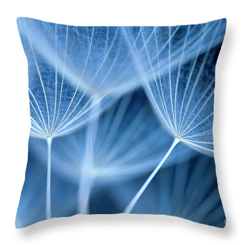 Dandelion Seeds Throw Pillow featuring the photograph Dandelion Seeds by Neil Overy