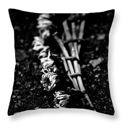 Art Throw Pillow featuring the photograph Dandelion Wreath by Hakon Soreide