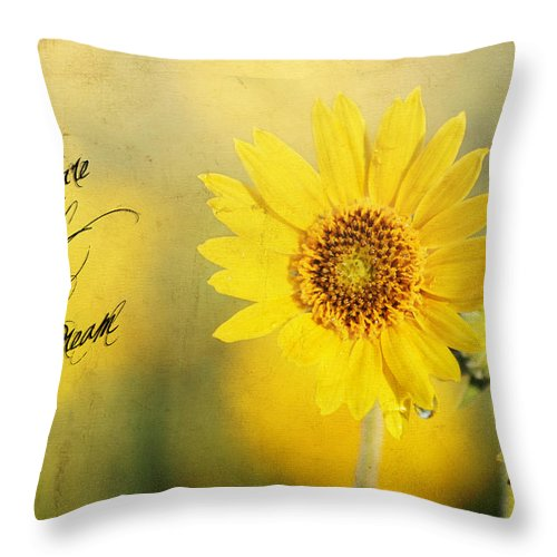 Dream Throw Pillow featuring the photograph Dare To Dream by Darren Fisher