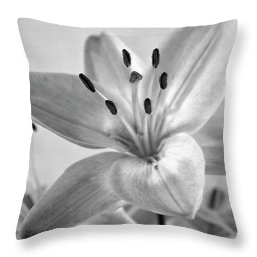 Day Lily Throw Pillow featuring the photograph Day Lily by Carolyn Marshall