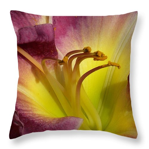 Day Lily Throw Pillow featuring the photograph Day Lily by Skip Willits