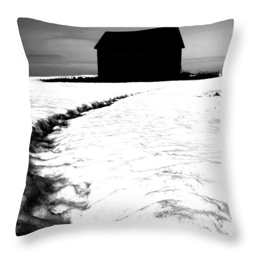 Rural Decay Throw Pillow featuring the photograph Dead Move by The Artist Project