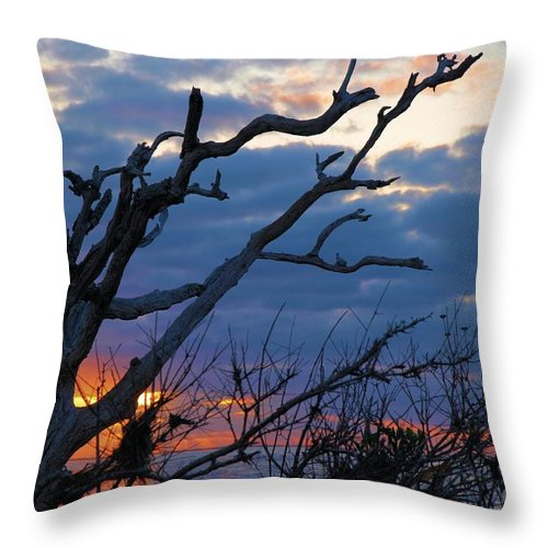 North Carolina Outer Banks Throw Pillow featuring the photograph Dead Trees At Sunrise by Adam Jewell