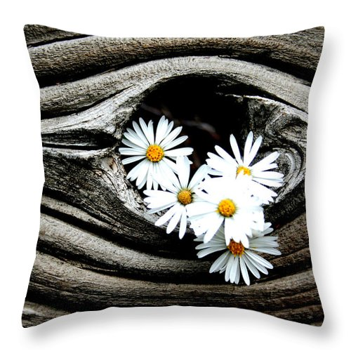 Flowers Throw Pillow featuring the photograph Dead Wood And Asters by Ric Bascobert