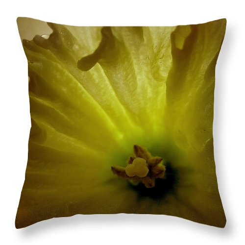Flower Throw Pillow featuring the photograph Deep Inside The Daffy by Mary Anne Williams
