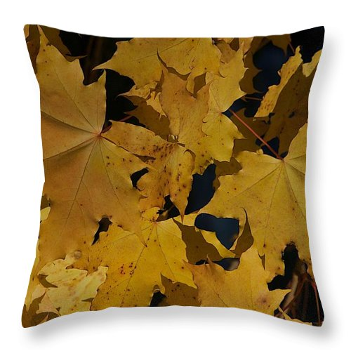 Fall Throw Pillow featuring the photograph Deep Leaves by Joseph Yarbrough
