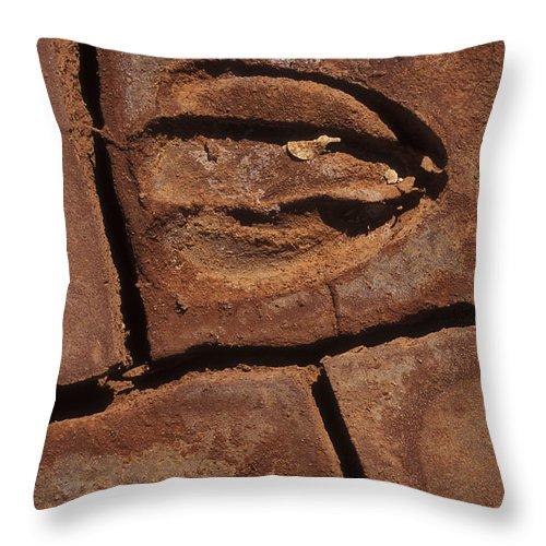 Sandra Bronstein Throw Pillow featuring the photograph Deer Imprint In Mud by Sandra Bronstein