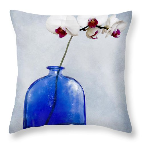 Maine Throw Pillow featuring the photograph Delightful by Alana Ranney