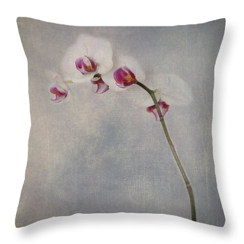 Orchid Throw Pillow featuring the photograph Delightful I by Alana Ranney
