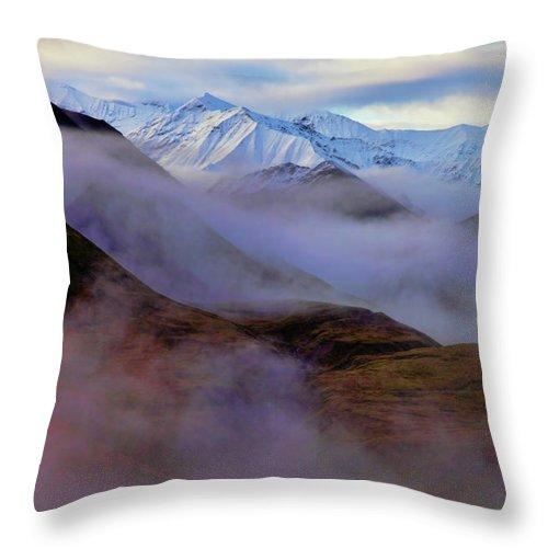 Denali National Park Throw Pillow featuring the photograph Denali Dawn II by Rick Berk